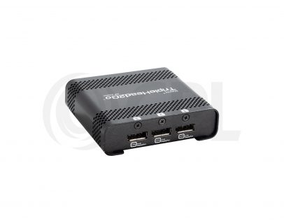 Matrox Triple Head 2 Go Displayport